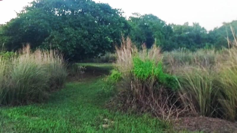 Hideaway, Villa Florida