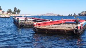 Tequina Ferries