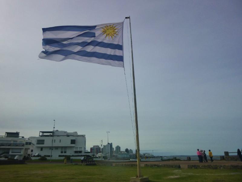 Punta del Este Flag